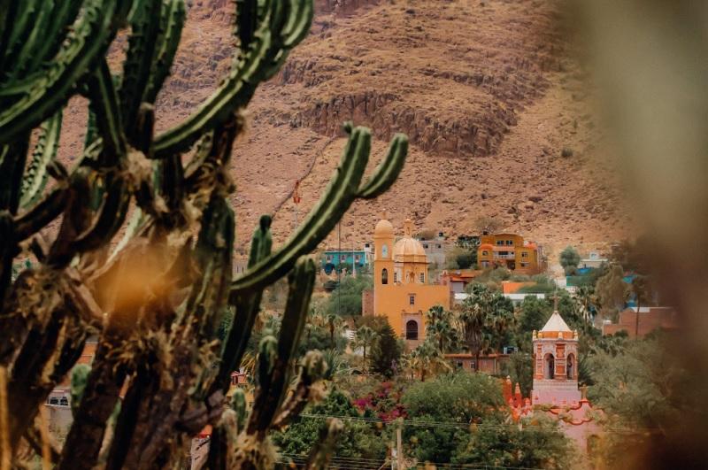 メキシコペソの特徴とトラリピでの相性